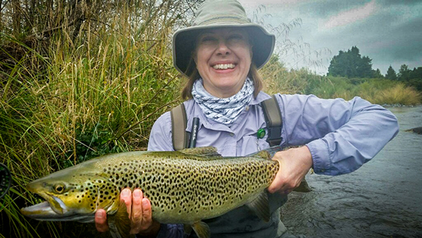 Tongariro river brown trout caught on Cicada dry fly